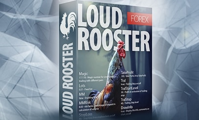 Loud Rooster EA as a gift